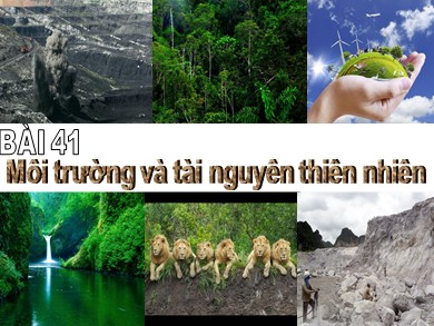 Bài giảng Địa lí lớp 10 - Chương 10, Bài 41: Môi trường và tài nguyên thiên nhiên