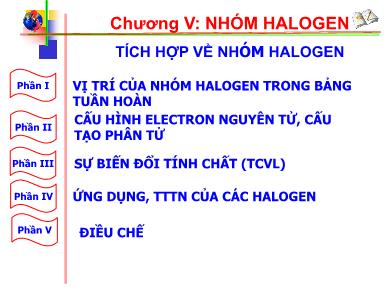 Bài giảng Hóa học lớp 10 - Chuyên đề: Tích hợp về nhóm Halogen
