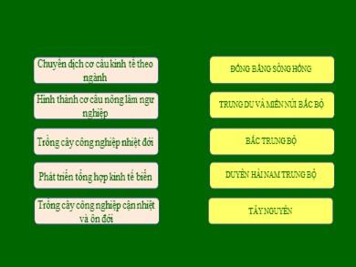 Bài giảng môn Địa lí lớp 12 - Bài 39: Vấn đề khai thác lãnh thổ theo chiều sâu ở Đông Nam Bộ