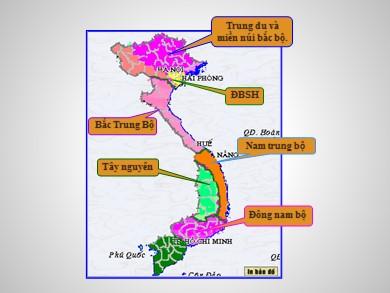 Bài giảng môn Địa lí lớp 12 - Bài 41: Vấn đề sử dụng hợp lí và cải tạo tự nhiên ở Đồng bằng sông Cửu Long